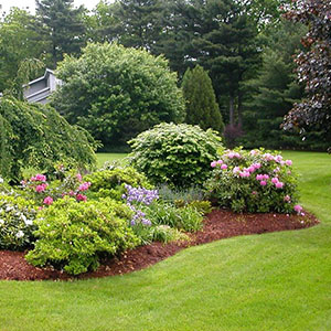 landscaping services wellington